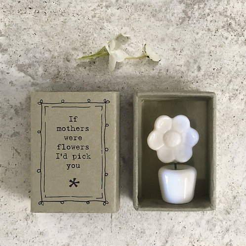 cute matchbox sized gift by east of india