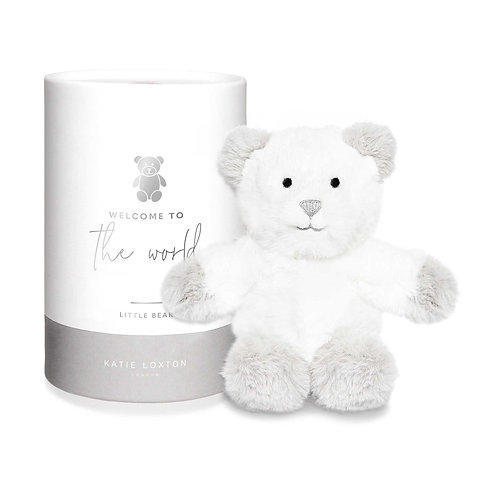 bear in a box by katie loxton