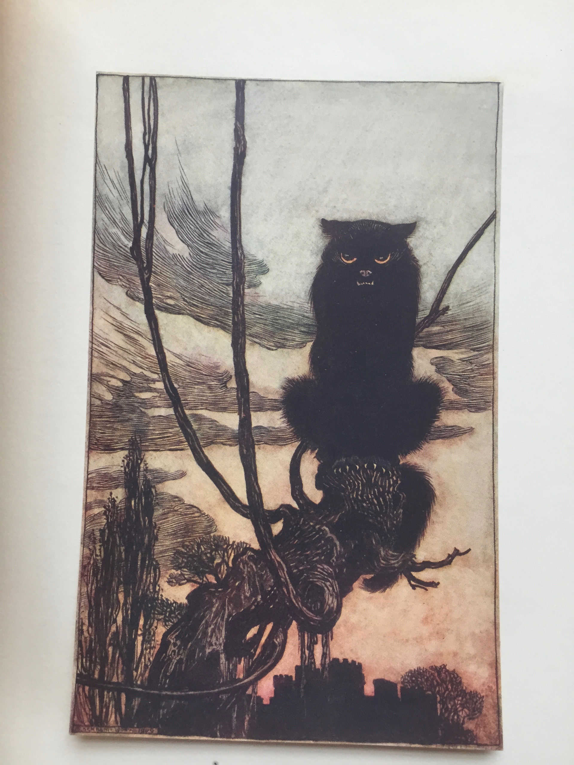 Grimms Fairy Tales 1909