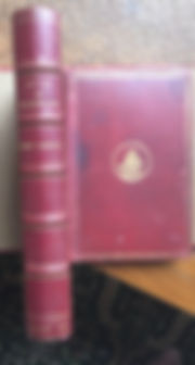 Alicein Wonderland by Lewis Carrol 1866 editon