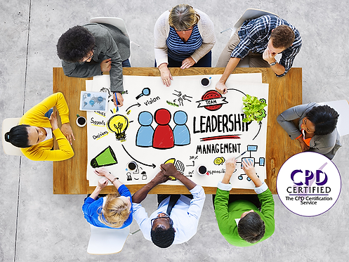 Nimble Course - Introduction to Leadership (Duration: 45 minutes)