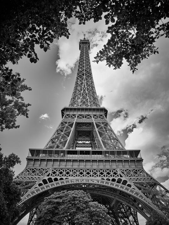 ParisCollection2013_0040bw-6x8.jpg