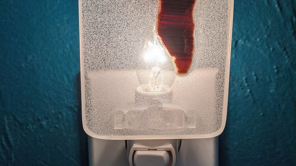 florida resin nightlight