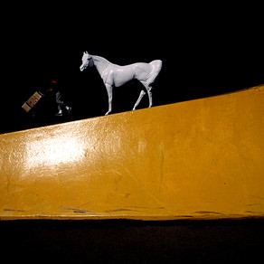 The end of the wild horse chase.