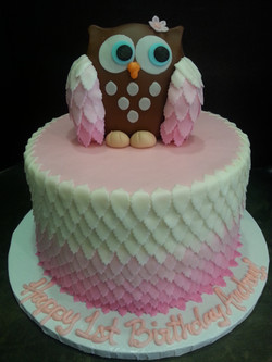 Ombre feathers Owl Cake