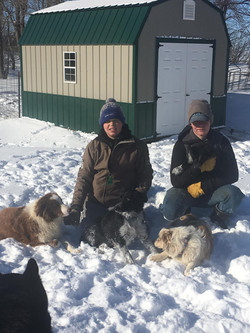 Our Snow Dogs