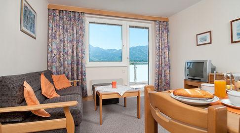 Zimmer02bPan.jpg