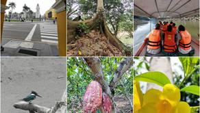 Atemberaubendes Peru - Teil 4 Amazonas