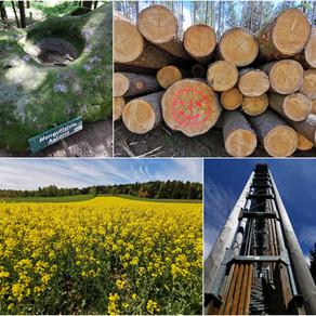 Energie tanken im Waldviertel