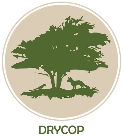 DRYCOP LOGOTIPO PRINCIPAL FINAL-01.png