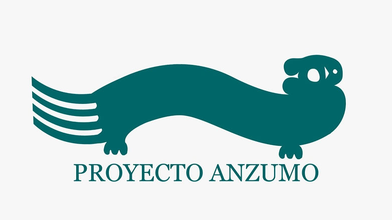 Proyecto Anzumo editado.jpg