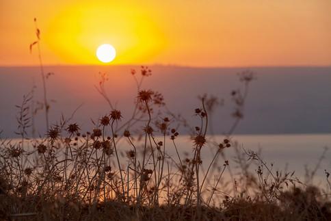 See Genezareth und der Golan