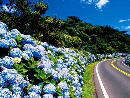 4 motivos para você investir em turismo no Rio Grande do Sul.