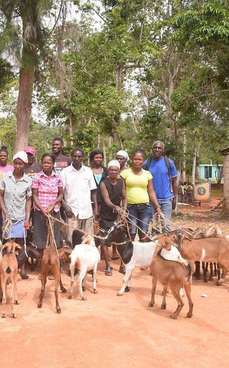 15 CEI-Goat Distribution.JPG
