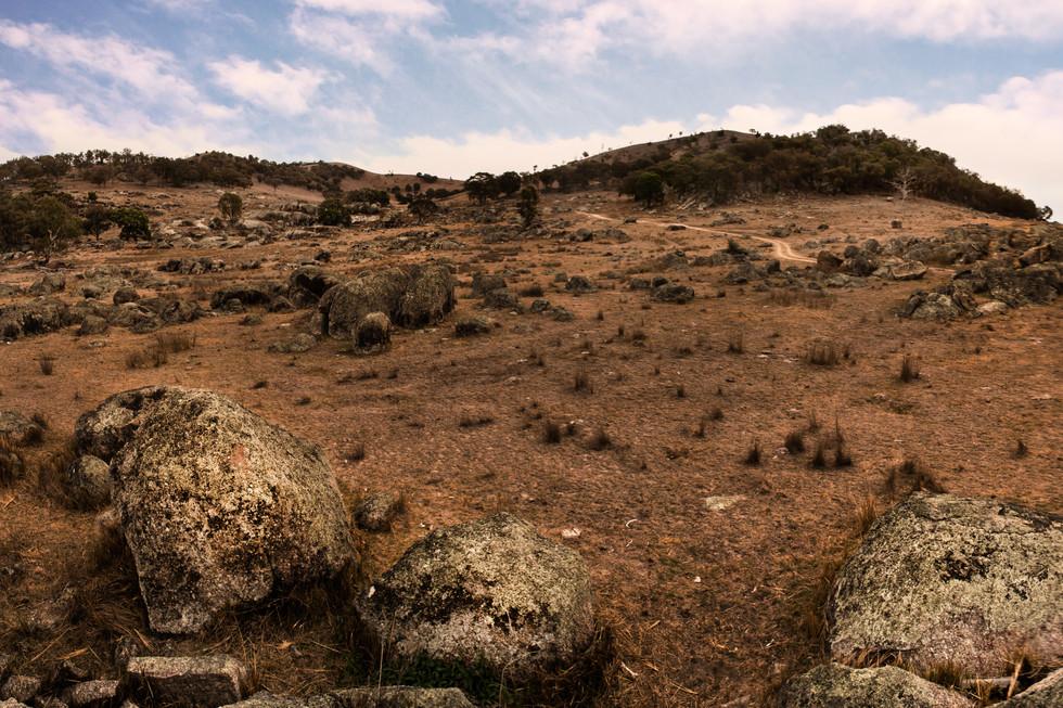 Bendemeer Hills.jpg