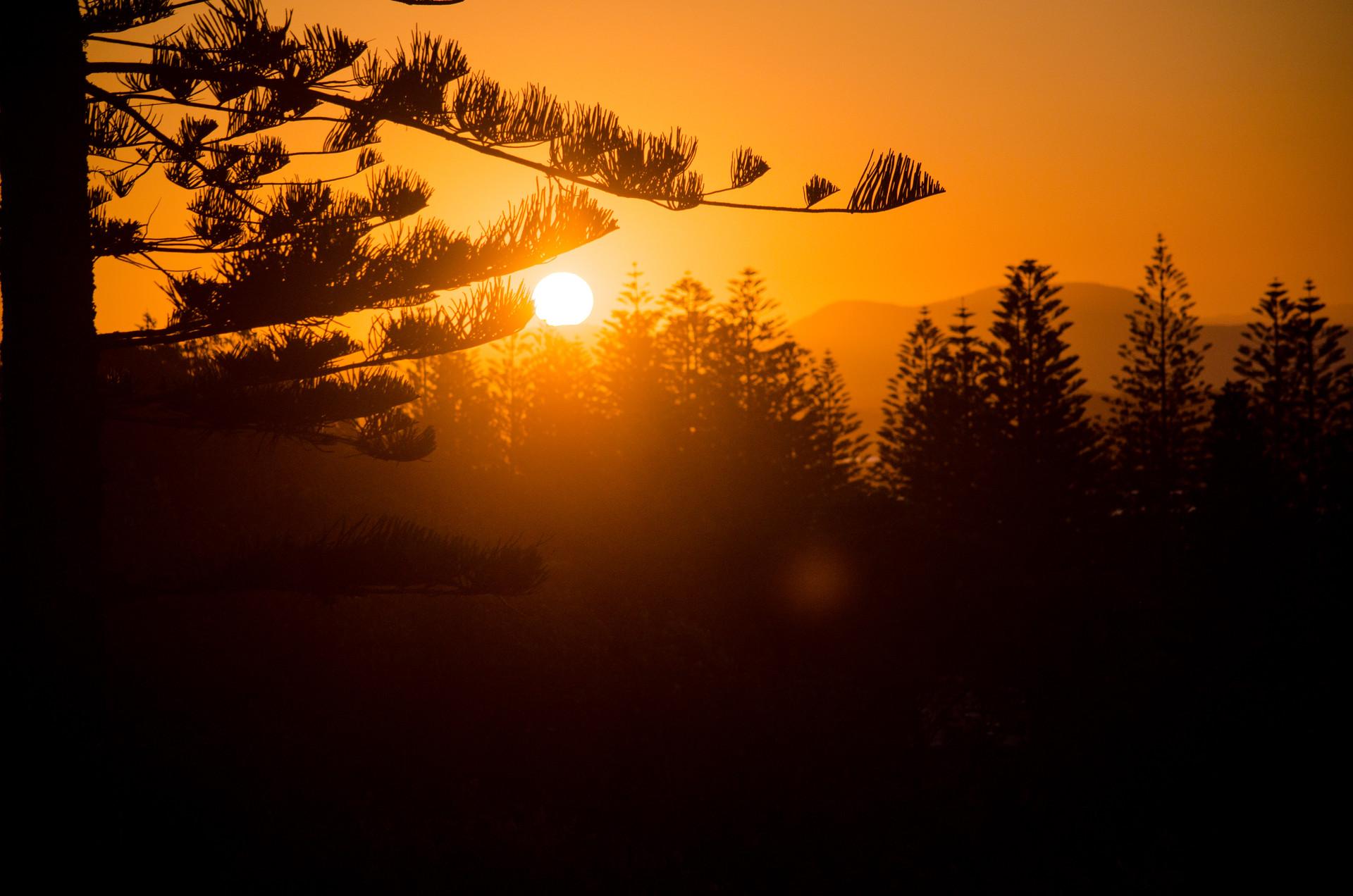 Sunset in port.jpg
