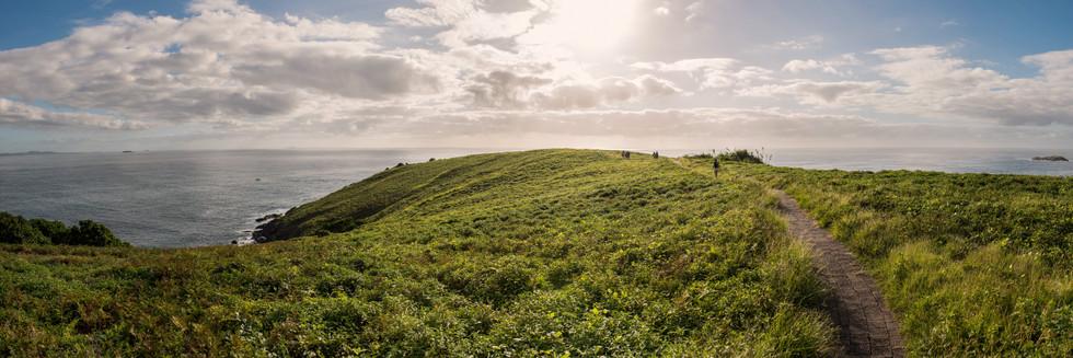 Muttonbird Island Panorama.jpg