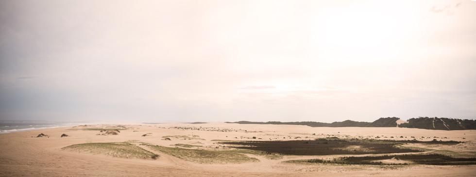 Wasteland_Panorama.jpg
