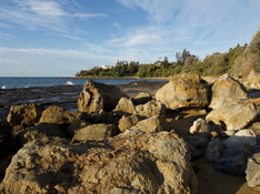 Tilbury Cove to Penguin Head