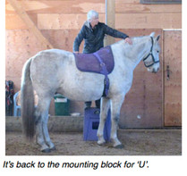 'U' and Riding