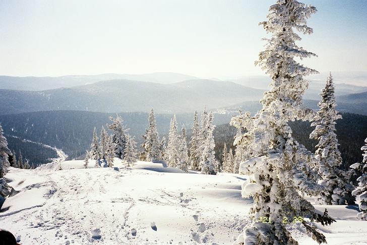 2 snow.jpg