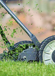 Mowing Turf Master Sod