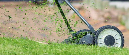 Setup Sekačka na trávu