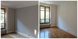 Repair and Paint
