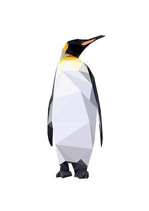 pinguin222.jpg
