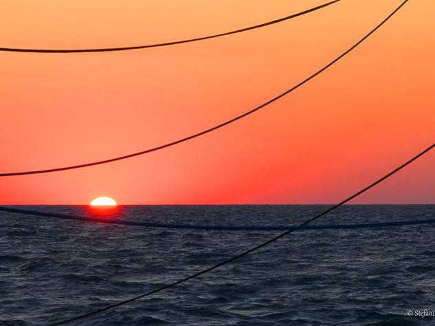 Il sole tra le reti