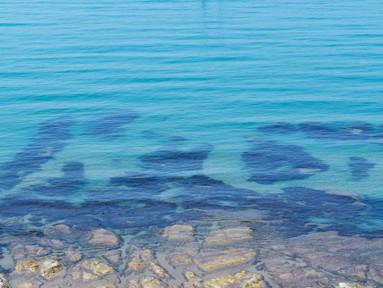 Naufragar m'è dolce in questo mare