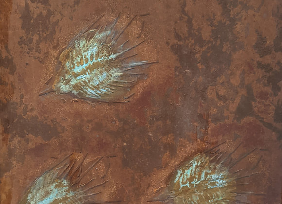 Grouping of fossil fish