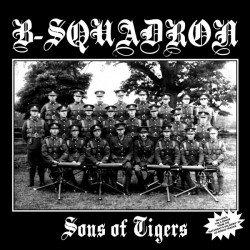 b squadron sons of tigers vinyl lp