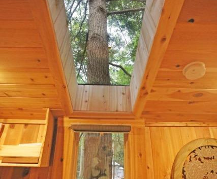 Amazing views inside and out of The Maple Treehouse.jpg