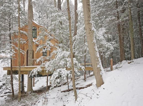 The Beech Treehouse Winter Landscape.jpg