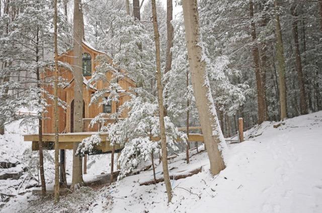 The Beech Treehouse Winter Landscape.jpg