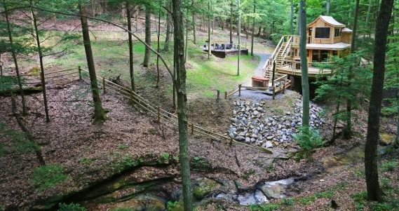 The Beech Treehouse Panoramic.jpg