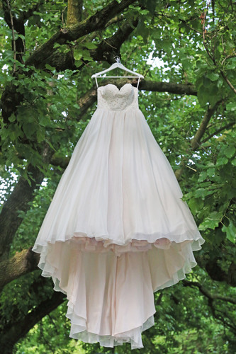 Bridal Gown Hanging In Trees