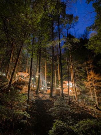 Enchanted Woodland Treehouses