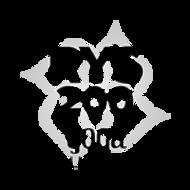RYS 200 logo.png