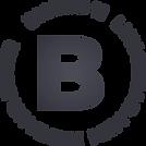 B11_logo.png