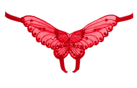 Butterfly Crotchless Panties