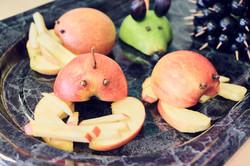 Fruchtfliege-SAOS__DSF0741.jpg