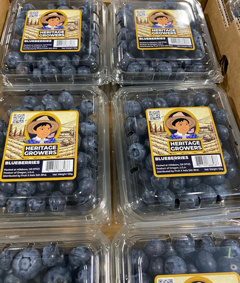 Blueberry Packing House Operation under COVID-19