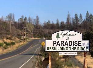 rebuilding-Paradise-ca-feature (1).jpg