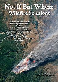 wildfiresolutions.jpg