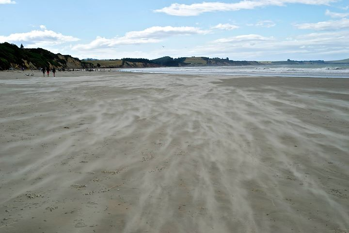 Moeraki Beach, South Island, NZ