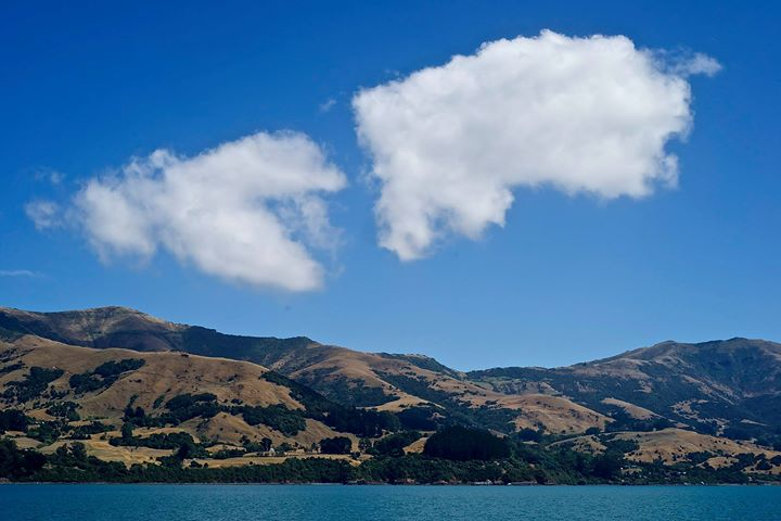 The caldera of a volcano, Akaroa