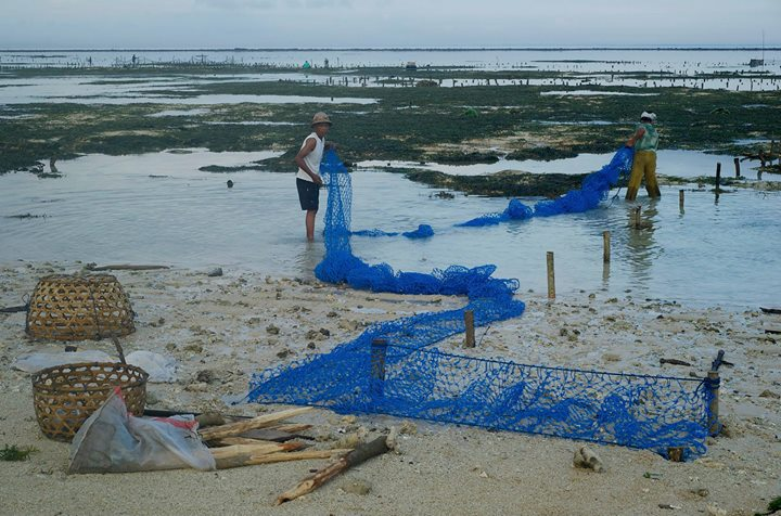 Husband and wife setting a net to farm seaweed