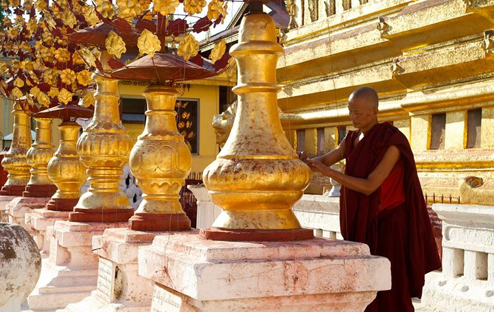 Buddhist monk at the Shwe-zi-gon Pagoda, Nyaung-U